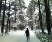 雪の軽井沢。
